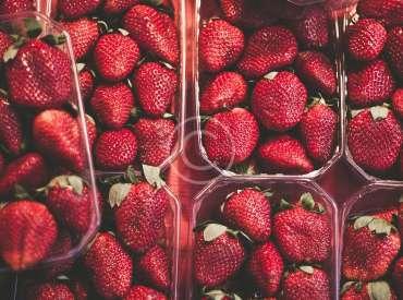 Delicious, Healthy Produce