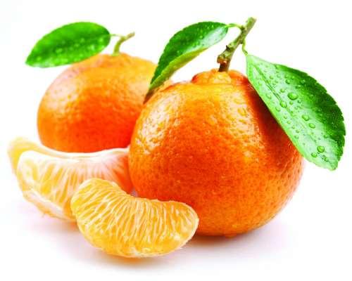 In_season_May_Mandarins